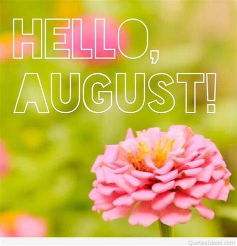august images  sayings  summer