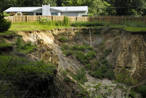 backyard sinkhole a year later backyard sinkhole still cavernous news
