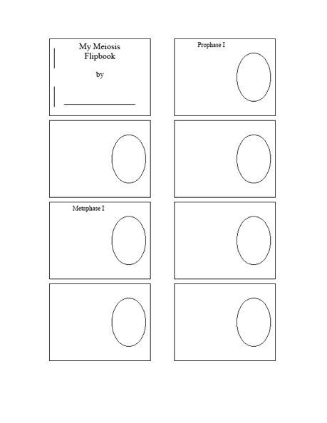 mitosis flip book template a lapbook for plant and animal cells wehavekids