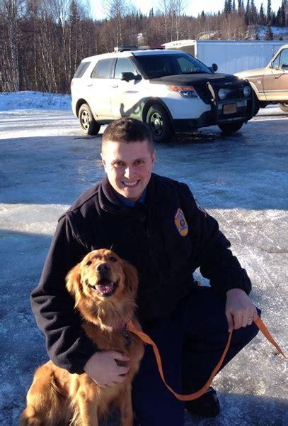 golden retriever rescue anchorage trapper creek survives snowmachine crash thanks to his alaska media
