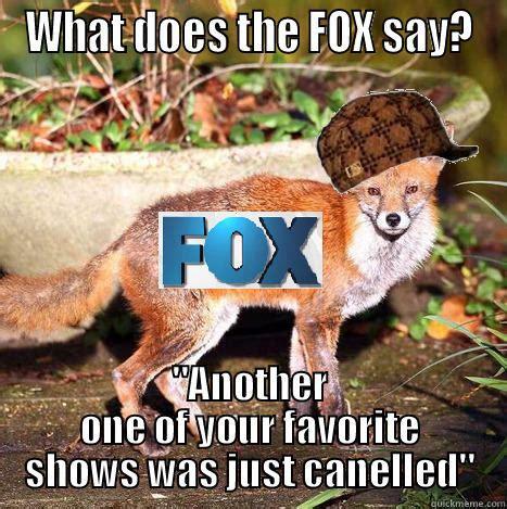 What Did The Fox Say Meme - what does fox say quickmeme