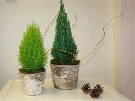 birch bark vases christmas tree centerpieces decor by