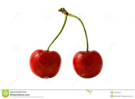 Cherry On White cherry objects on white background stock photo image