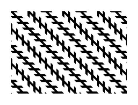 ilusiones opticas fisiologicas y cognitivas ilusiones opticas edem259arte3ro