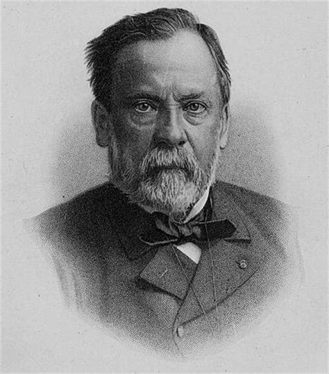 biography of louis pasteur biography of louis pasteur and his germ theory of disease