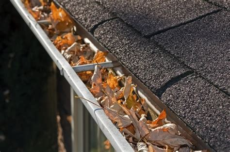 Best Way To Clean Siding And Gutters - how to clean gutters bob vila