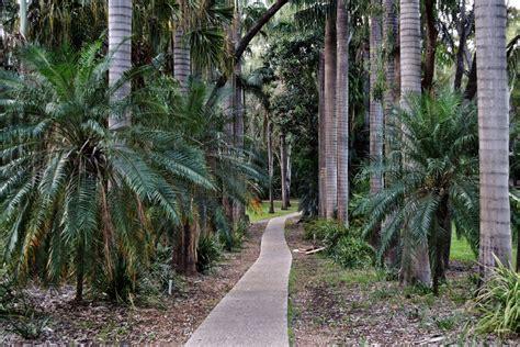 emerald botanic gardens places and pics