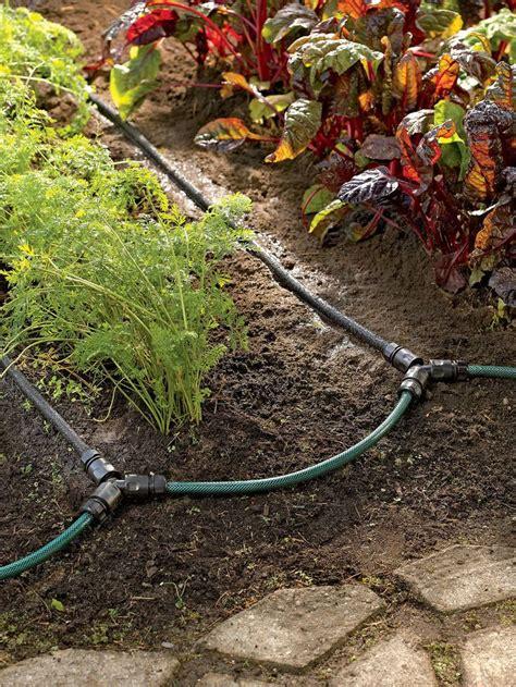 backyard irrigation systems best 25 garden watering system ideas on pinterest
