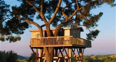 dormire casa sull albero lista di cose da fare dormire in una casa sull albero