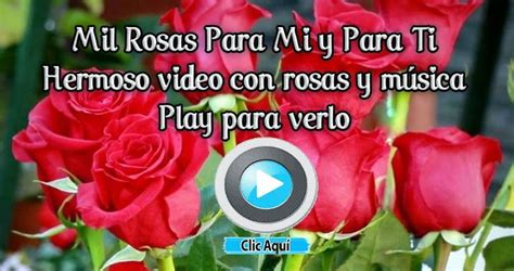 las mas hermosas fotos de rosas con poemas de amor brotes de amor mil rosas para mi y para ti bello amor
