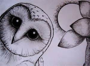 barn owl pencil drawing by cyra r cancel from