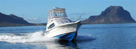 game fishing catamaran big game fishing and catamaran cruises black river