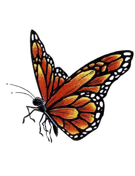 Monarch Design | orange monarch butterfly tattoo free design ideas