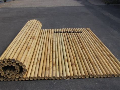 bamboo fencing cane fences sticks rolls panel  deals