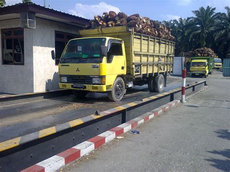 Timbangan Sawit Jembatan Timbang Pks Rama Rama Weighbridge Unggahan