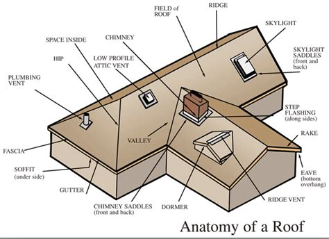 anatomy of a roof system article a roofing glossary roofing advice from roofing