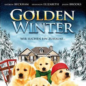 wir suchen ein zuhause golden winter wir suchen ein zuhause 2012