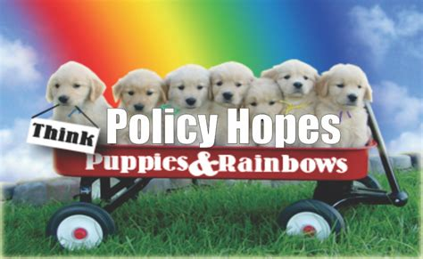 puppies and rainbows 3 things policy hopes puppies rainbows ria