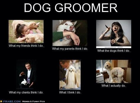 Pet Grooming: The Good, The Bad, & The Furry: Still Here