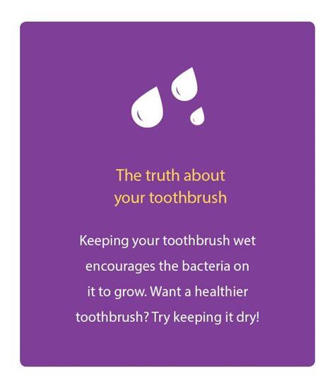 154 best dental knowledge images on dental health dental facts and dental assistant