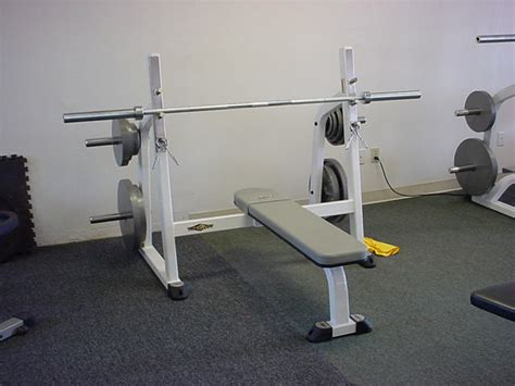 bench bars types of bench press bars 28 images types of bench