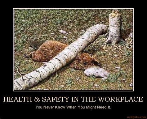 Health And Safety Meme - forklift accidents memes