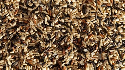 whole grains explained what science tells us about whole grains lifehacker