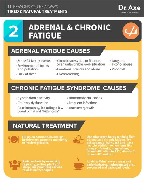 Adrenal Detox Home Remedy by 11 Reasons You Re Always Tired And How To Fix It