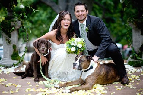 Wedding For Your Beloved Pet by In Wedding 21 Of Our Favorite Pet In Wedding Events