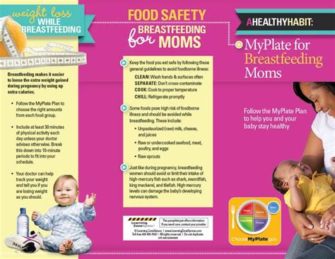 myplate for breastfeeding moms tri fold brochures