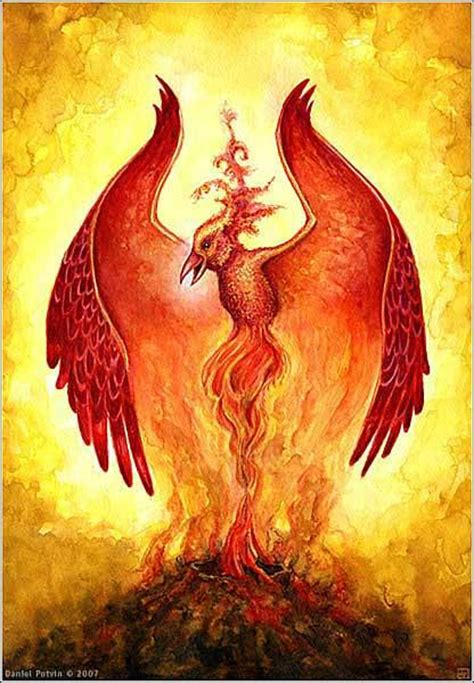 flames and phoenix rising tattoos poster