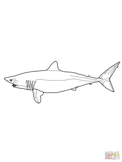 mako templates mako shark coloring coloring