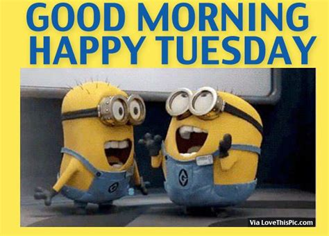 good morning funny minion pictures funny quotes  love
