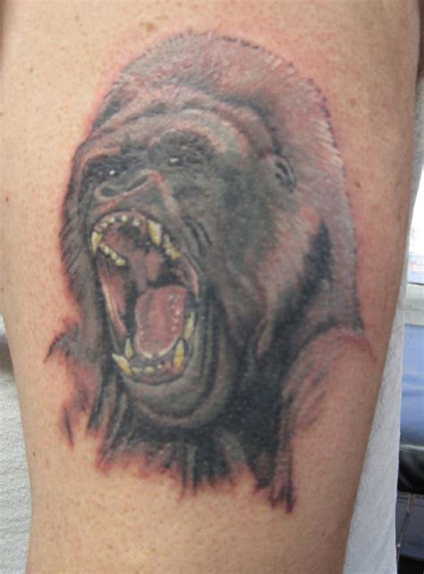 silverback tattoo pin silverback gorillas pictures to pin on