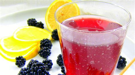 fruit extracts blackberry italian soda fruit extracts hip