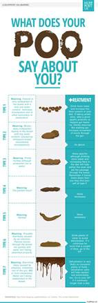 what your poo says about your health infographic reveals