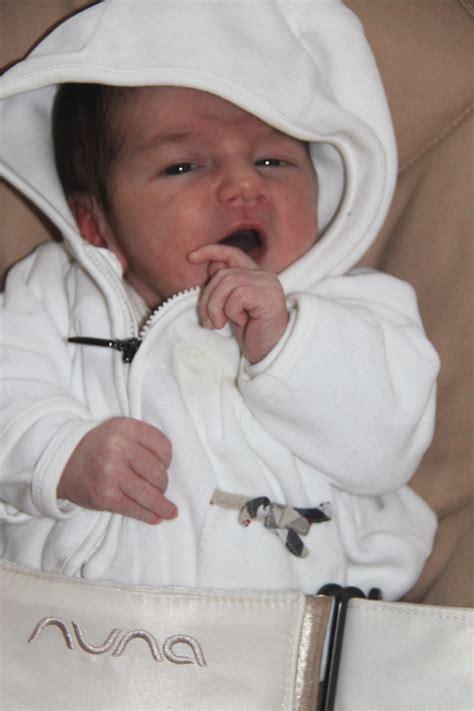 Look Like Nuna Bouncher baby bouncer leaf by nuna looks like coja