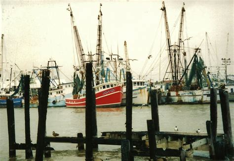 sam s boat galveston 17 best images about bigger and better texas on