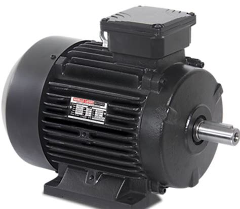 induction motor foot mounted havells