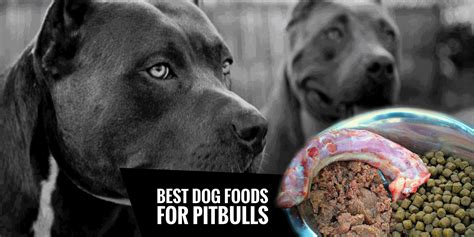 best food to feed a pitbull puppy 4 best foods for pitbulls high protein low