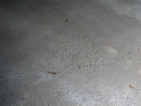 Repair Pitted Garage Floor by Du蝪a Svest Su蝪tina Bi艸a I Ostale Gluposti B92