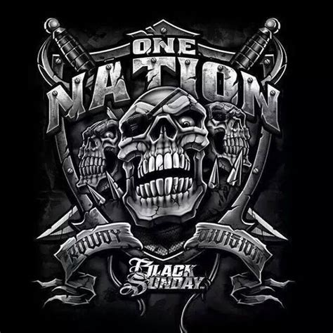 raiders images 931 best images about nation on