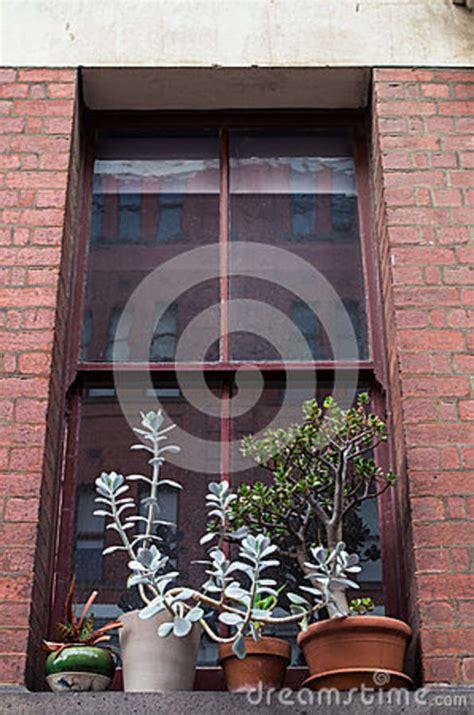 Window Sill Plant Holder Window Sill Plant Holder 28 Images Window Sill Plant