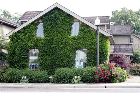 buy house in ontario buy house in ontario 28 images houses for sale in bright ontario buy a home for