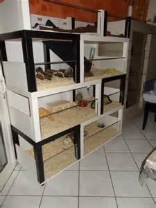 Diy Table Base Un Meuble 224 Cochon D Inde 224 Fabriquer 224 Petit Prix