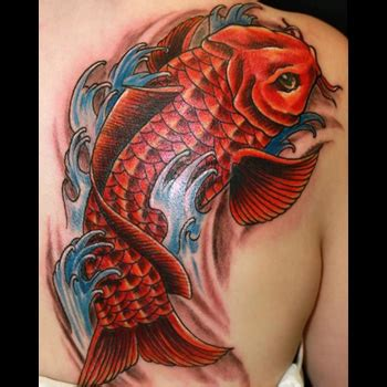 coy fish tattoo meaning koi fish meanings itattoodesigns