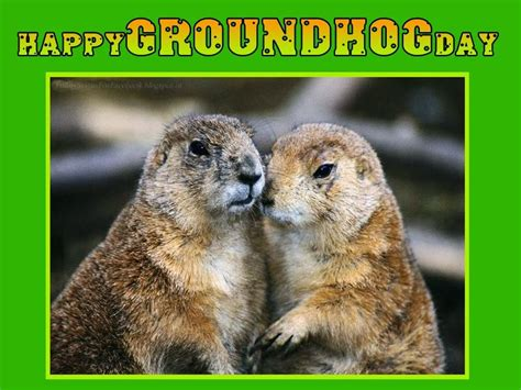 groundhog day free happy groundhog day quotes quotesgram