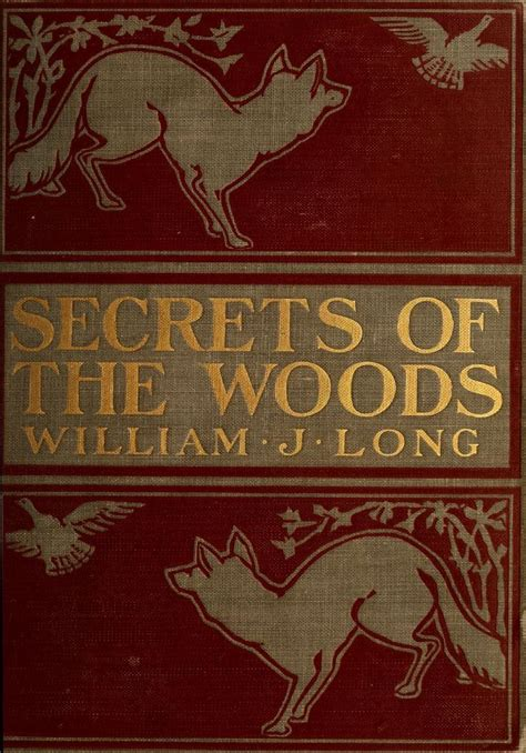 secrets of the woods wood folk series book three books best 25 vintage books ideas on antique books