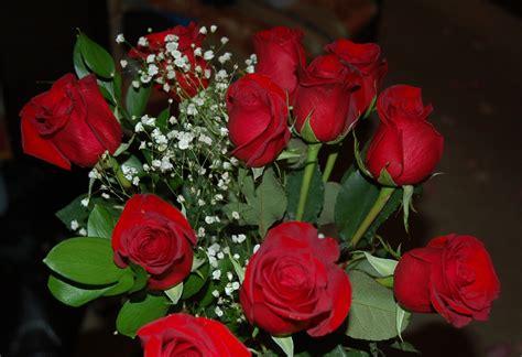 desktop themes roses valentine roses full desktop backgrounds