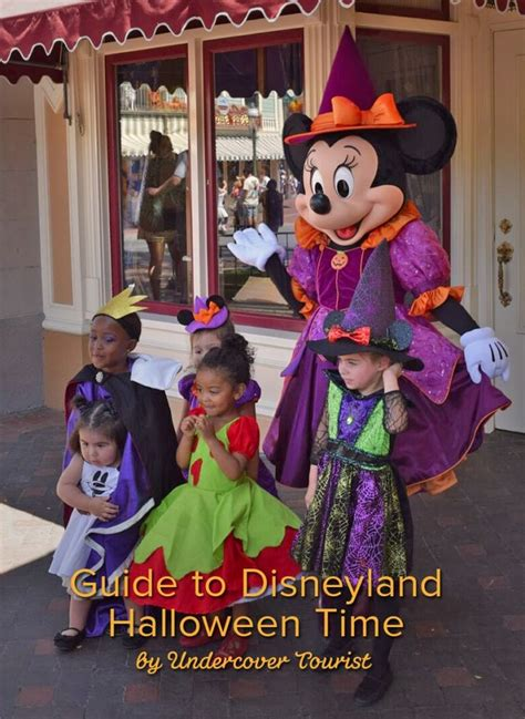disneyland s mickeys a field guide to disneyland resort s best kept secrets books 17 best images about happiest on earth on